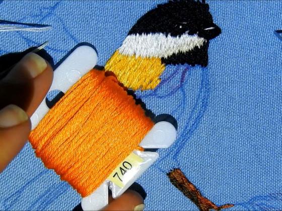 Como bordar un pájaro clase 2 How to embroidery a bird second class