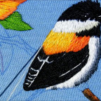 Como bordar un pájaro clase 3 How to embroidery a bird second class 3